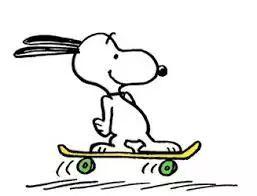 滑板.jpg